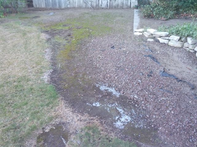 [Snapshot: there is still ice in my yard! augh!]
