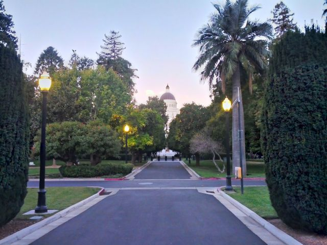 [Snapshot: morning in Sacramento Capitol Park]
